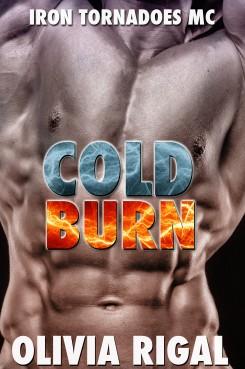 ColdBurnOptionB2-wpcf_245x369
